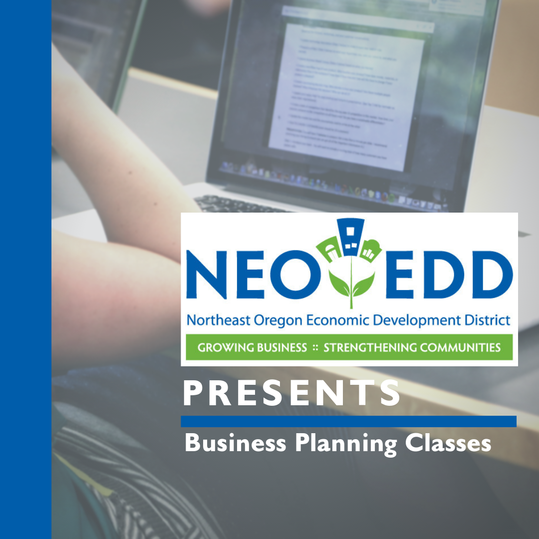 NEOEDD Business Planning Class in Enterprise